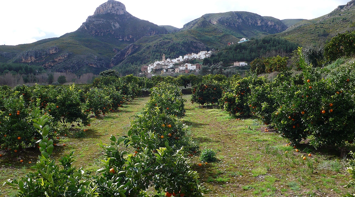 Alto Mijares, a land with an incredible natural wealth